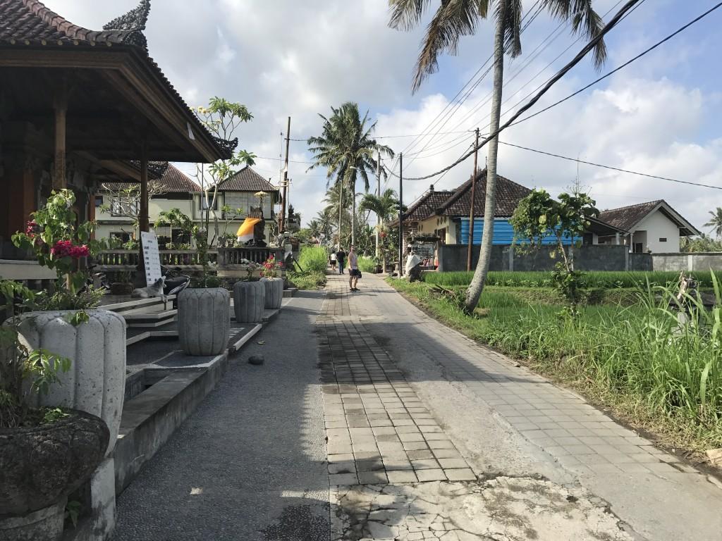 Bali2017 (7)
